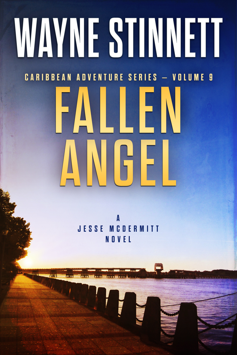 The book cover of Wayne Stinnet's novel, Fallen Angel