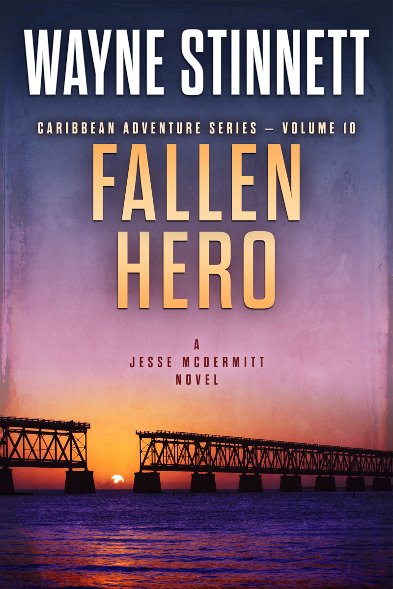 The book cover of Wayne Stinnet's novel, Fallen Hero