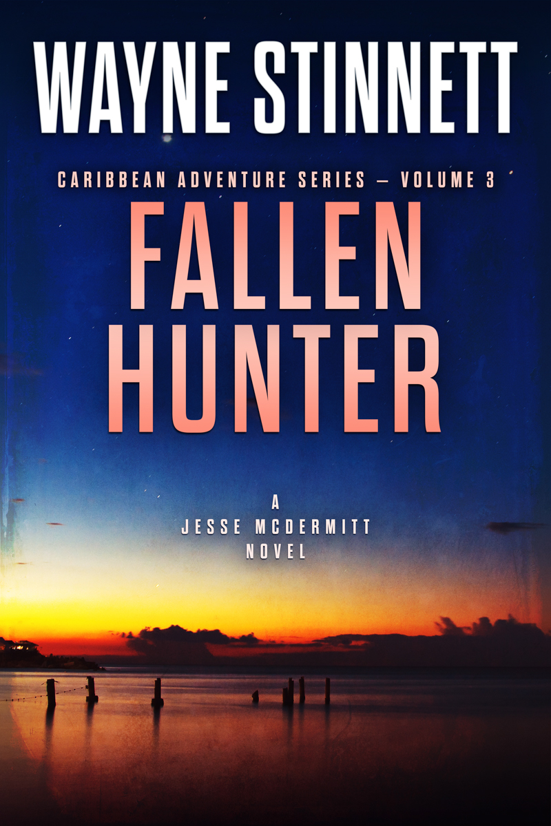 The book cover of Wayne Stinnet's novel, Fallen Hunter