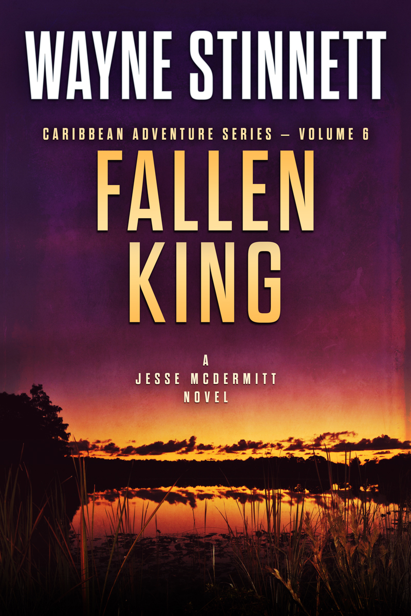 The book cover of Wayne Stinnet's novel, Fallen King