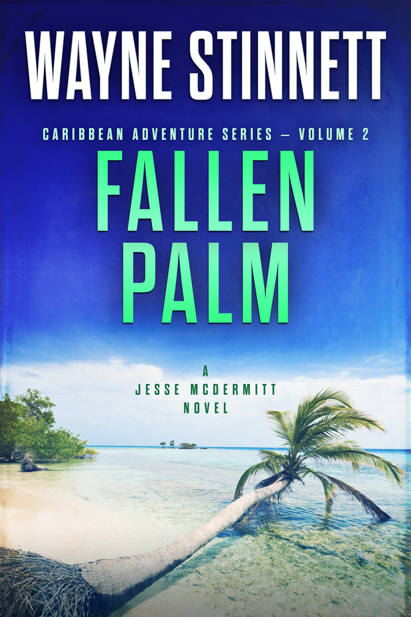 The book cover of Wayne Stinnet's novel, Fallen Palm