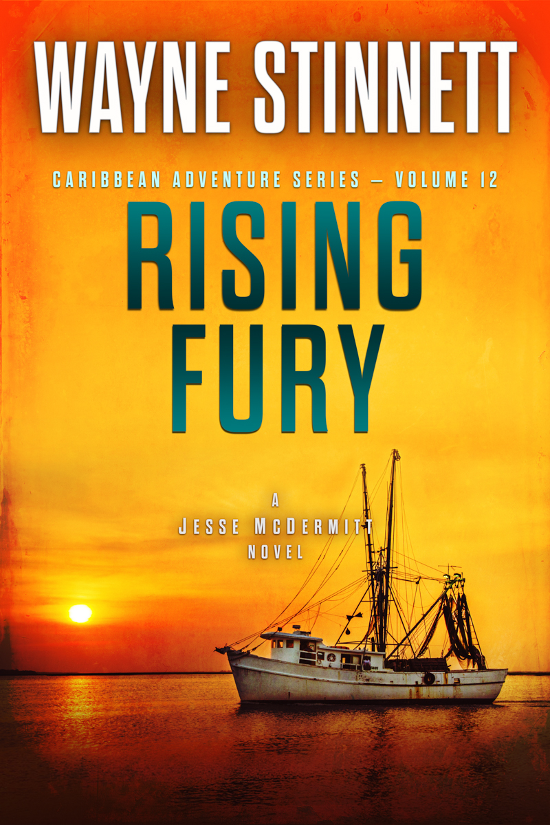 The book cover of Wayne Stinnet's novel, Rising Fury