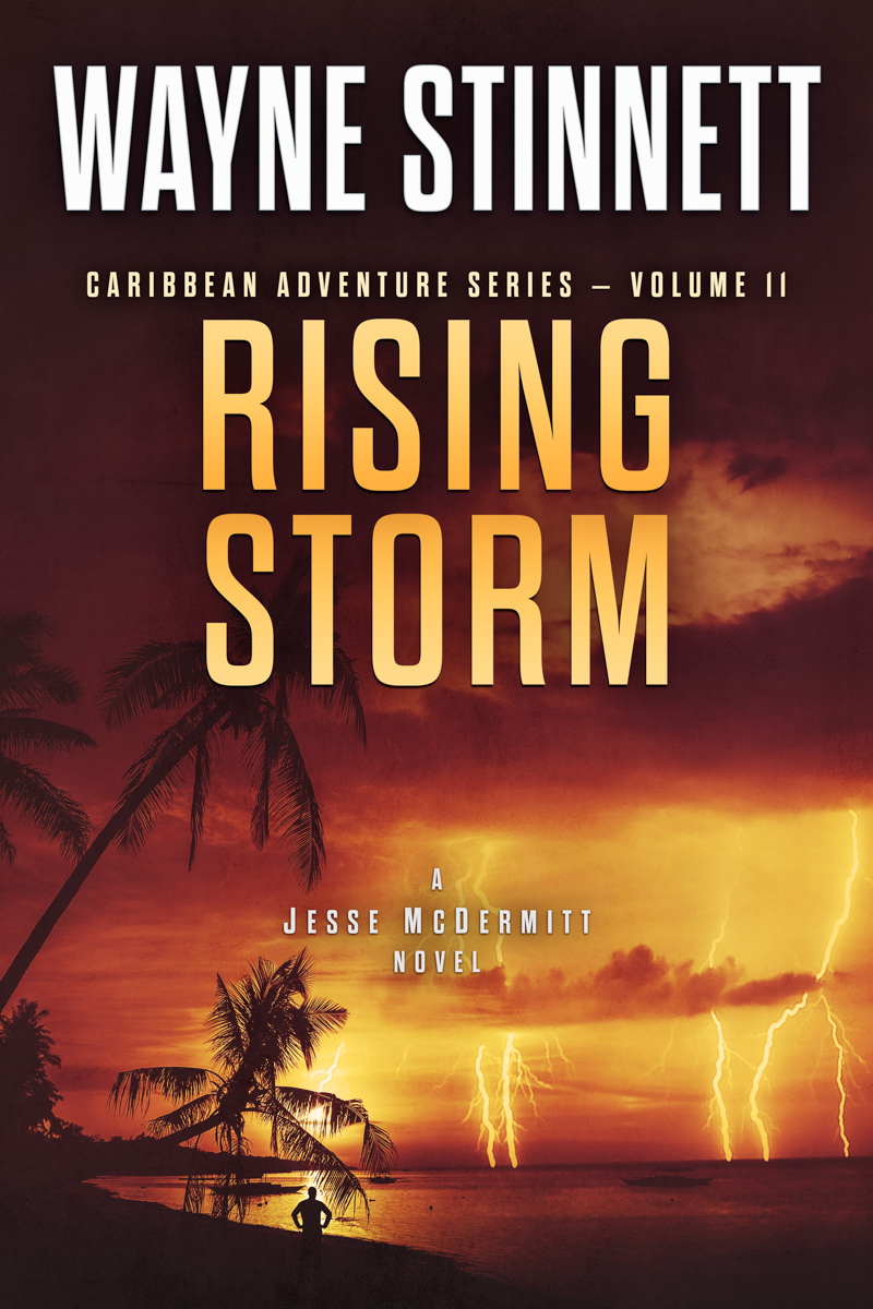The book cover of Wayne Stinnet's novel, Rising Storm