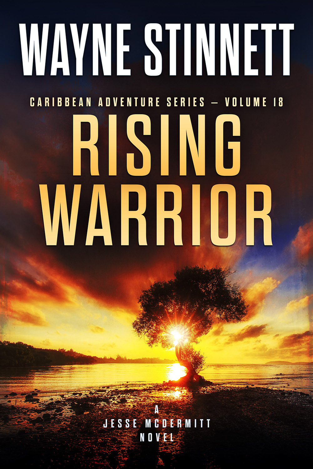 Book Cover of Rising Warrior by Wayne Stinnett