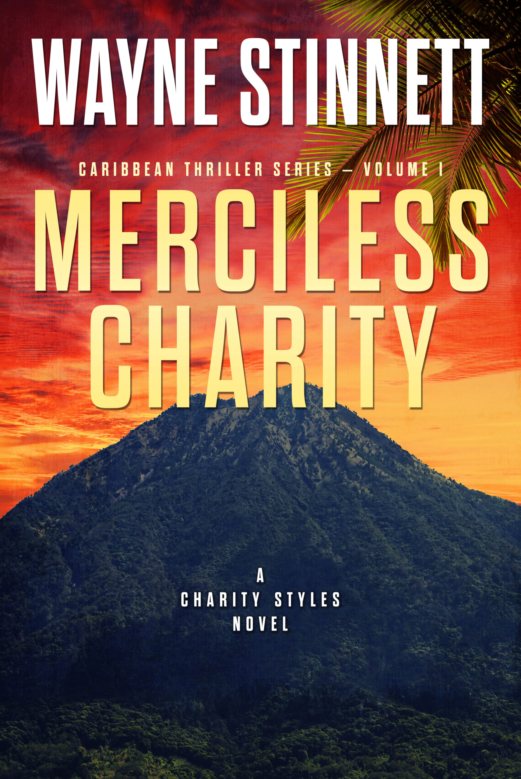 Book cover of Merciless Charity by Wayne Stinnett